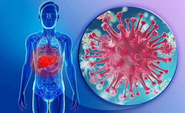 Một số điều cần biết về viêm gan do siêu vi